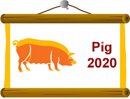 Pig Horoscope 2020 Predictions