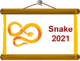Snake Chinese Horoscope 2021